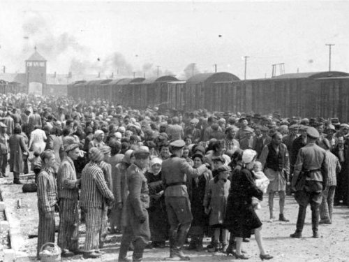 Selection in the Birkenau concentration camp (image from the Wikipedia Commons)